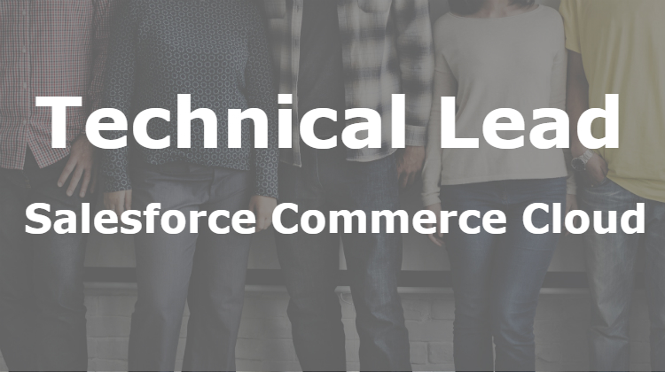 Technical Lead (Salesforce Commerce Cloud)